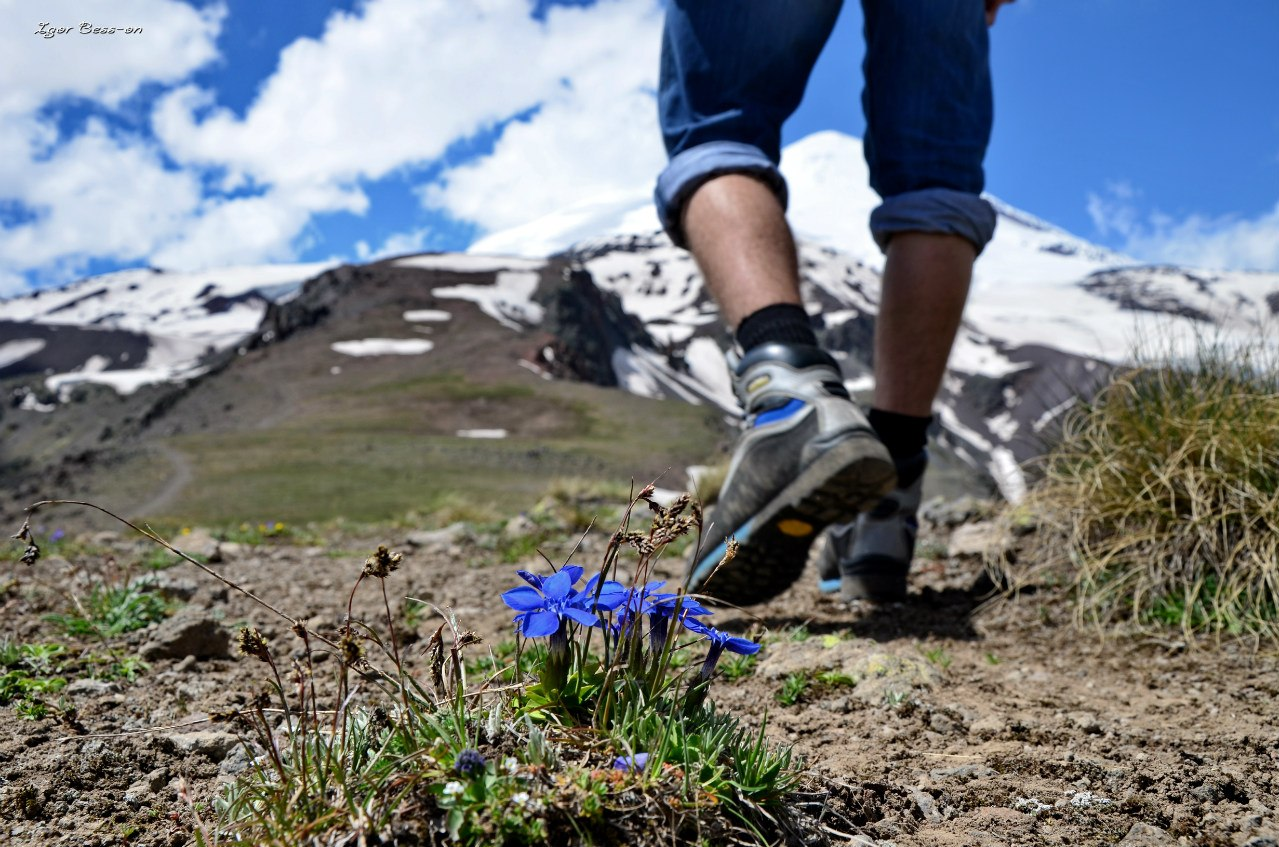 HOW TO CHOOSE THE FOOTWEAR FOR HIKING?